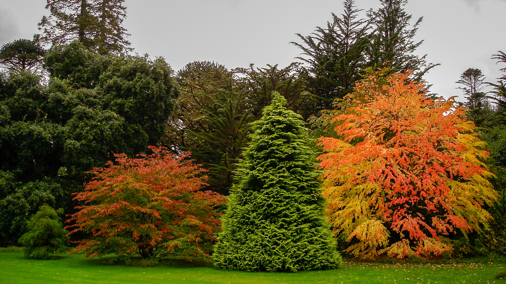 Gärten der Armadale Castle im Herbst