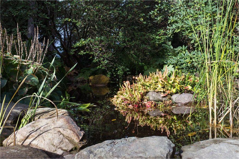Inverewe Garden Teich