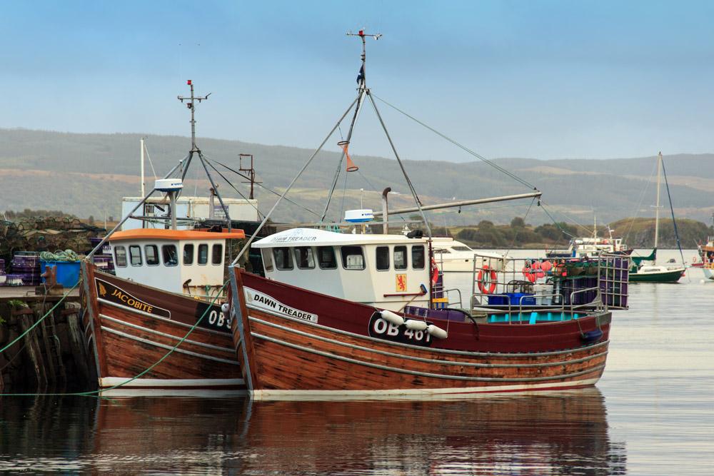 Fischerboote in Tobermory