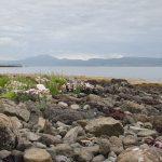 Blick auf Loch Dunvegan