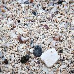 Sand des Coral Beach