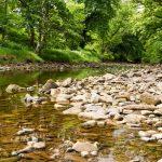 Kilmarie River, Foto: Martin Goldmann