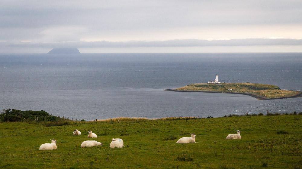 Inseln Pladda und Ailsa Craig
