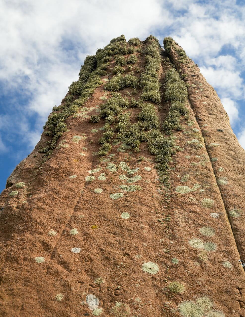 Machrie Moor-Stein mit Moosbewuchs
