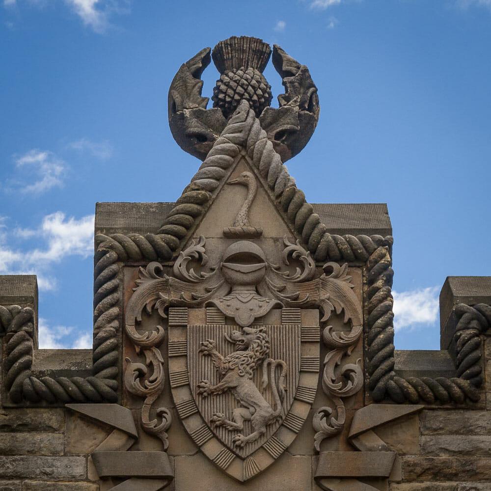 Distel auf dem Wallace-Monument