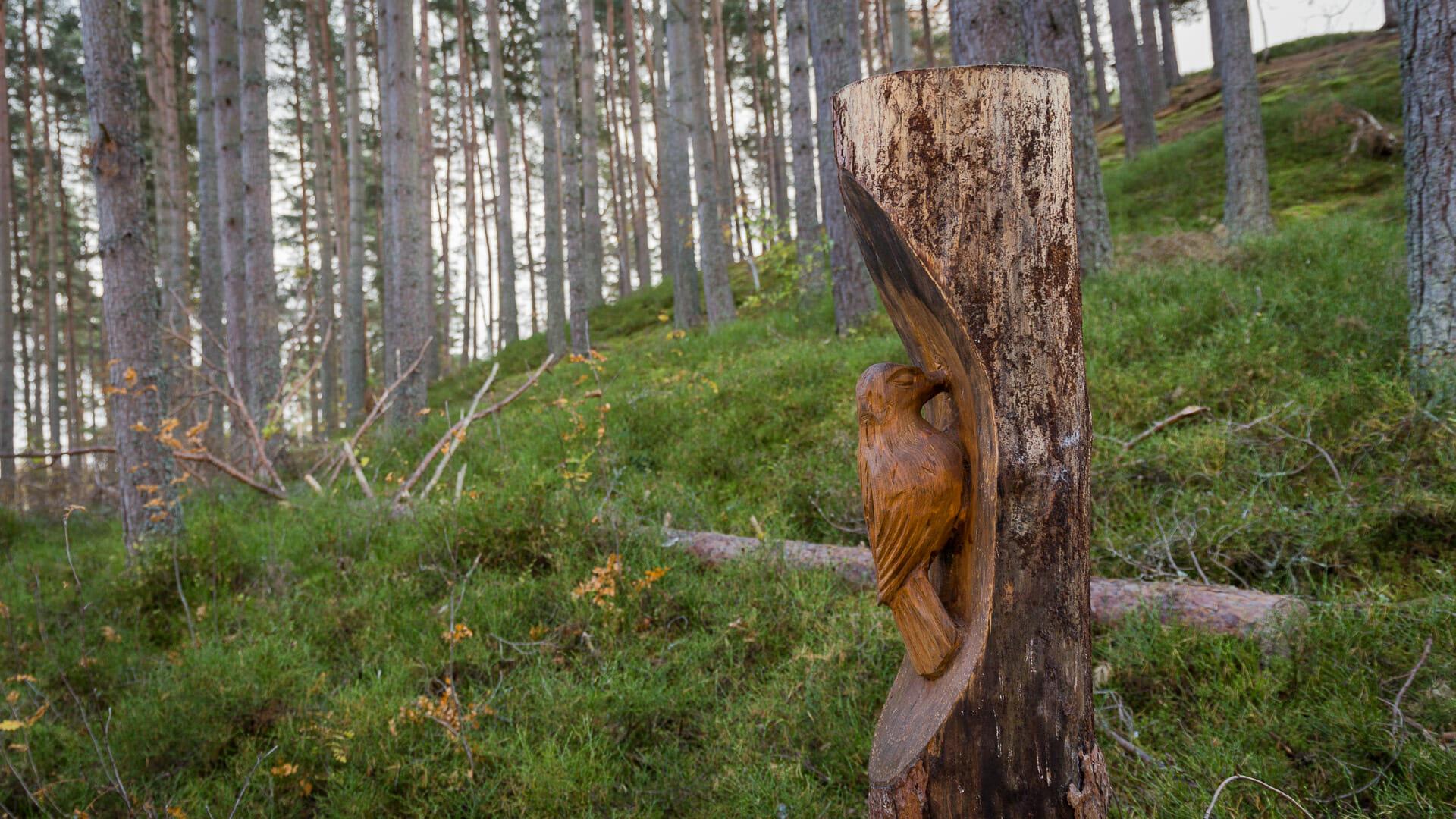 Holzschnitzereien im Wald