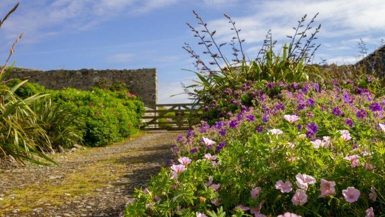 Eingang des großen Gartens bei Kilbride - (Foto: Martin Goldmann)