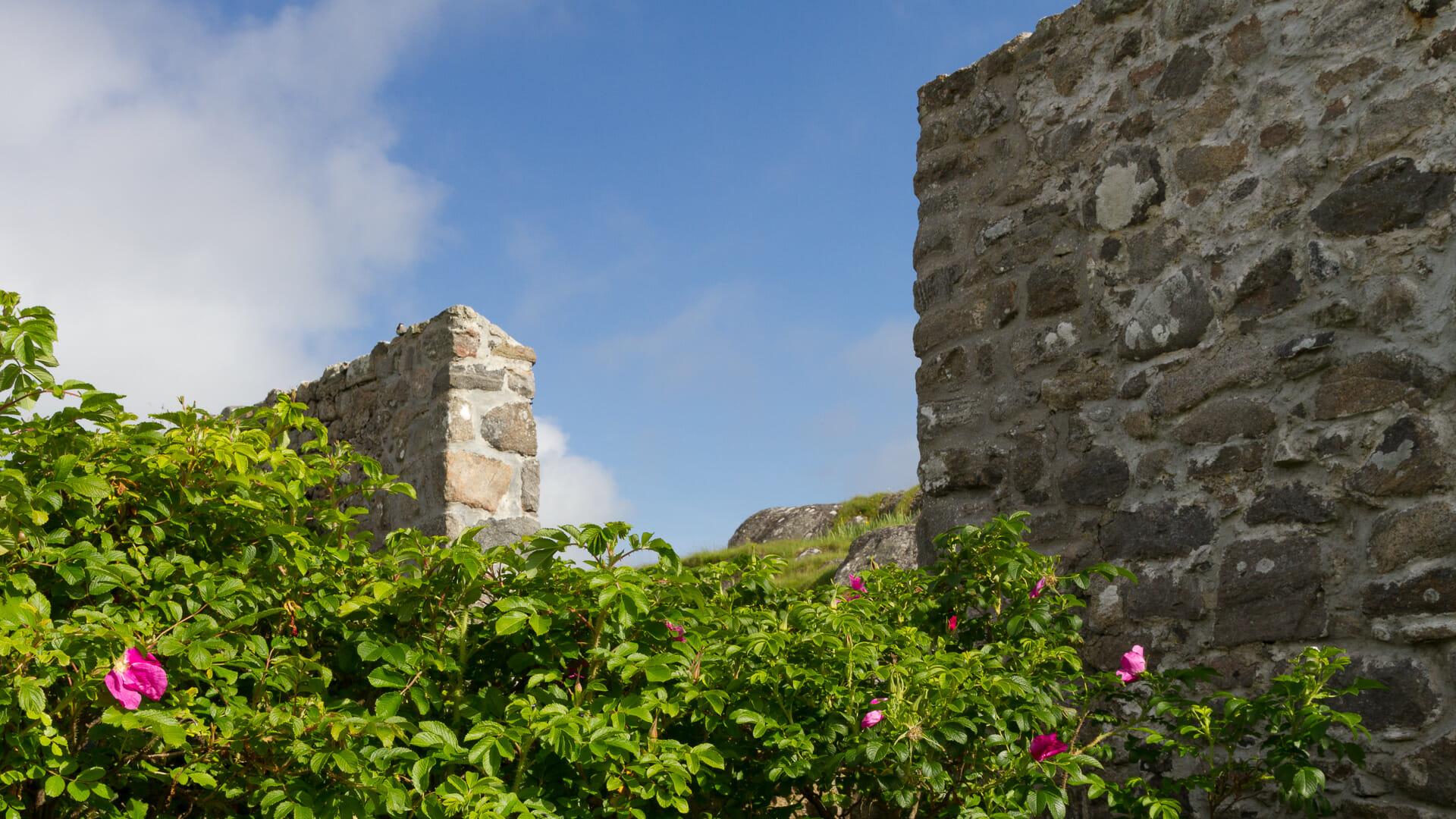 Blick auf die Mauern des Gartens - (Foto: Martin Goldmann)
