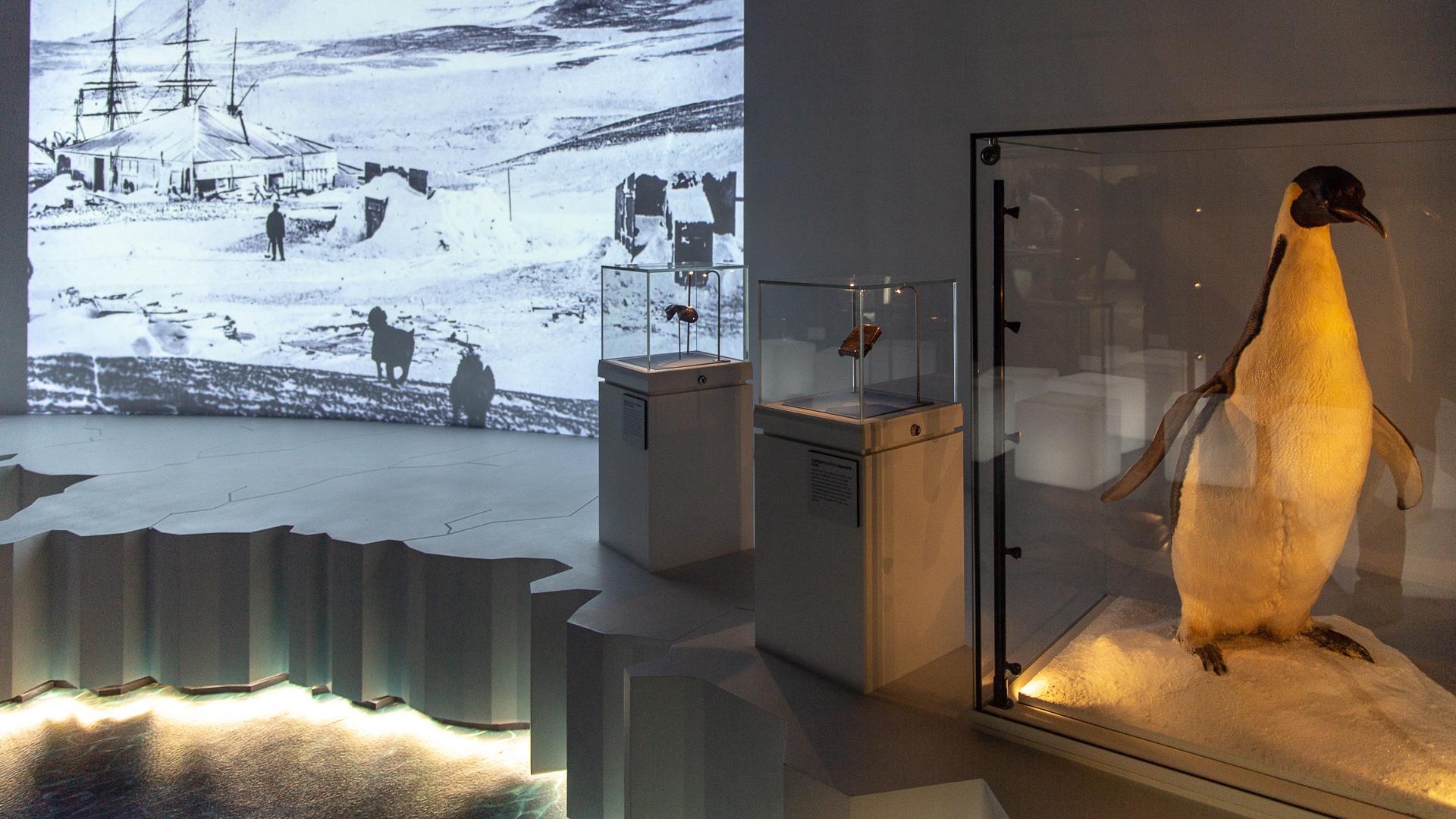Der erste Raum der Ausstellung setzt die Besucher in Szene