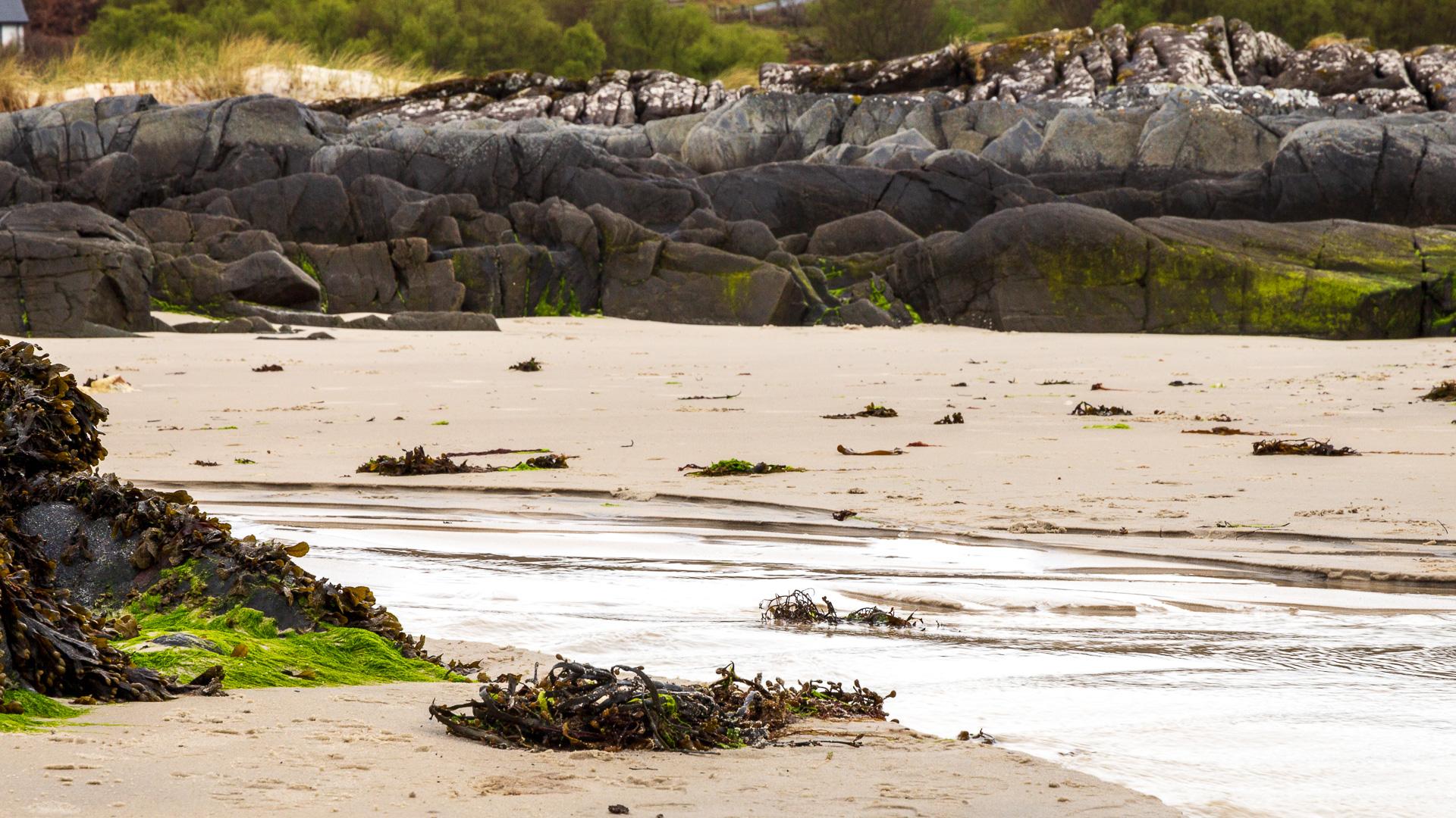 Ein Bach, der in die Sandbucht fließt