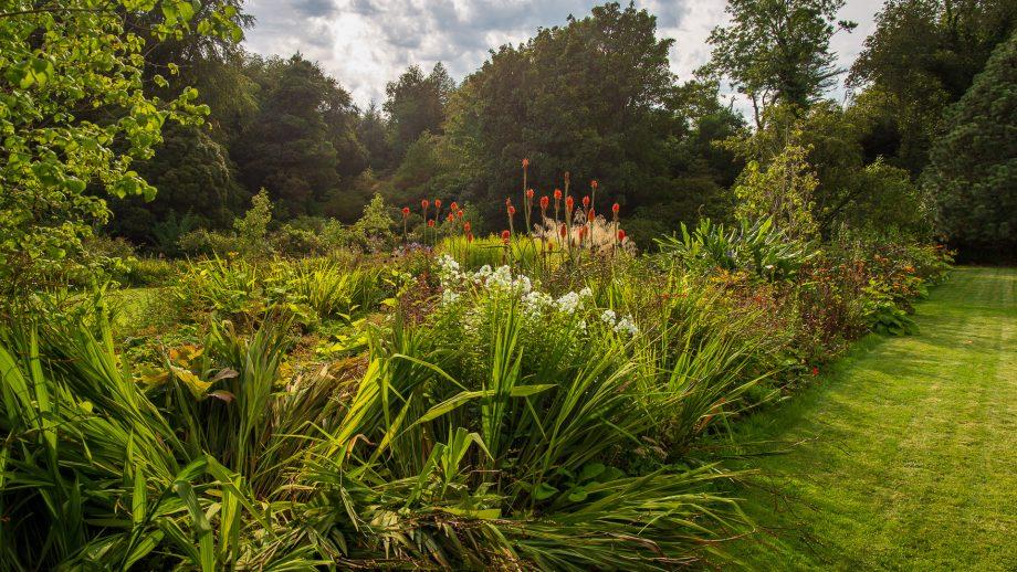 In den Gärten von Achamore