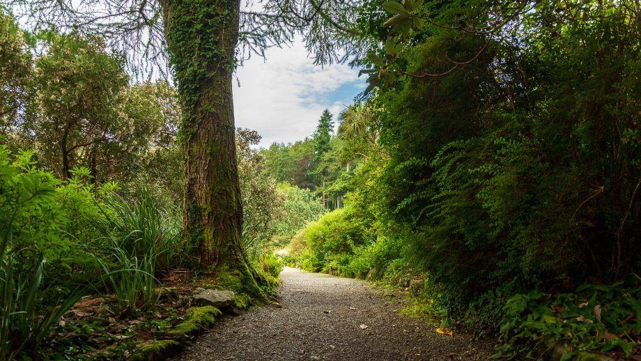 Weg durch Arduaine Garden