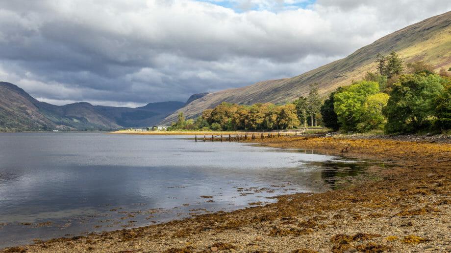 Austern gedeihen in Loch Fyne hervorragend